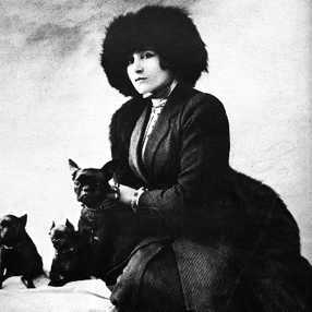 """an overview of the hand by sidonie colette """"the cat, la chatte is a french novel by sidonie-gabrielle colette released in 1933, the book tells of a love triangle involving camille malmert, her husband alain amparat and his chartreux."""