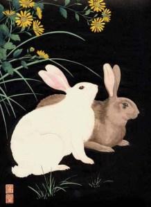 Rabbits by Nishimura