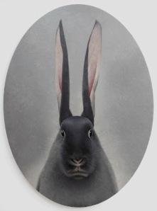 Rabbit looking into mirror by Shao Fan